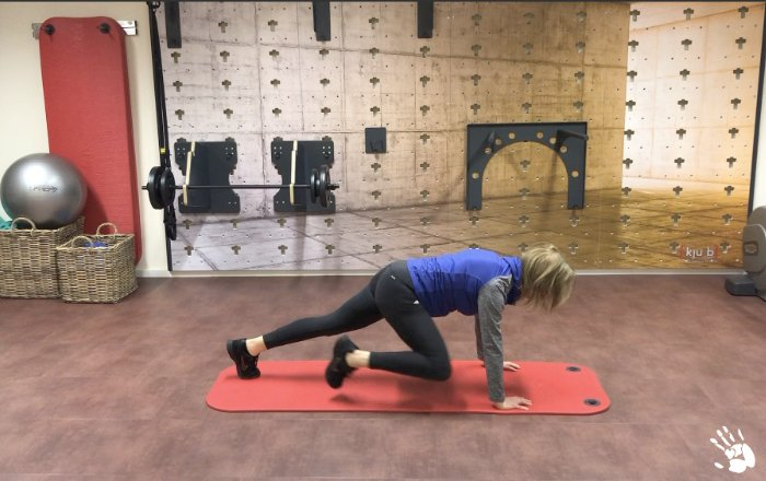 Workout - stabile Körpermitte